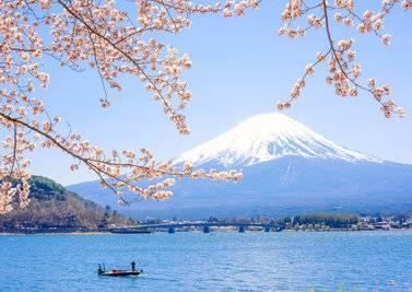欧洲 日本+日本+日本8天旅游东京、京都、大阪深度游